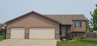 Harrisburg Single Family Home For Sale: 704 Laura St