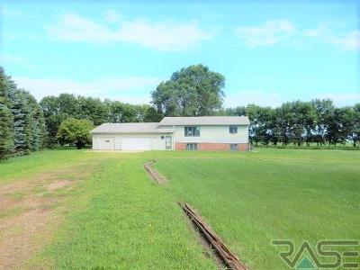 Brandon Single Family Home For Sale: 48188 Kim Cir