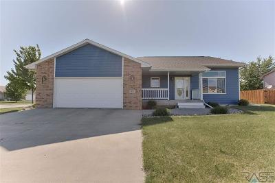 Harrisburg Single Family Home For Sale: 401 Augustana Ave