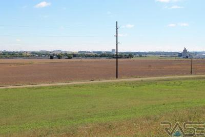 Brandon Residential Lots & Land For Sale: 25953 481st Ave