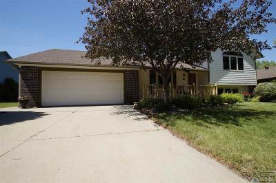 Brandon Single Family Home For Sale: 716 E Magnolia Dr