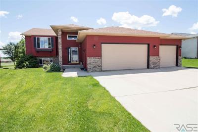 Brandon Single Family Home For Sale: 2613 E Sunrise Ct