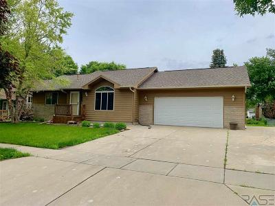 Harrisburg Single Family Home For Sale: 700 Chestnut St