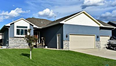 Sioux Falls Single Family Home For Sale: 400 S Golden Willow Ave