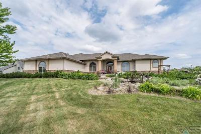 Sioux Falls Single Family Home For Sale: 47156 S Clubhouse Rd