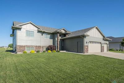 Sioux Falls Single Family Home For Sale: 1705 S Kinderhook Ave