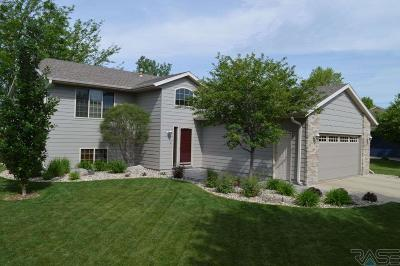Sioux Falls Single Family Home For Sale: 1921 S Grinnell Ave
