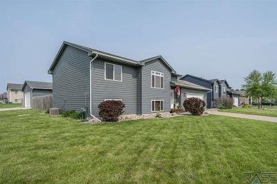 Sioux Falls Single Family Home For Sale: 5917 S Hallow Ave