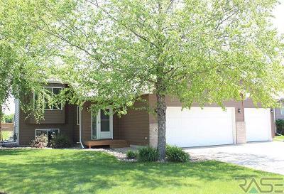 Brandon Single Family Home Active - Contingent Misc: 104 W River Oak St