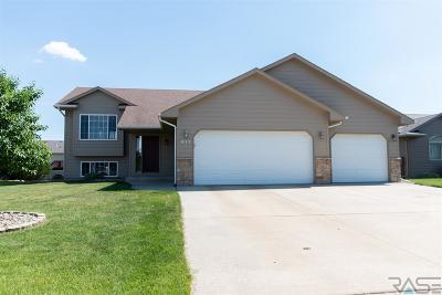 Harrisburg Single Family Home For Sale: 613 Saint Gregory St