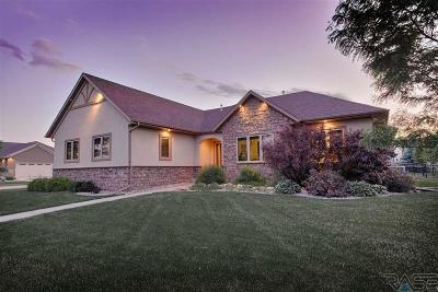 Sioux Falls Single Family Home For Sale: 913 S Honey Locust Ave