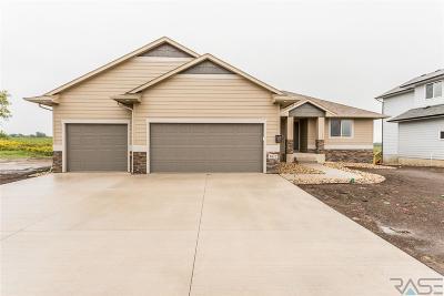 Sioux Falls Single Family Home For Sale: 3812 S Faith Ave