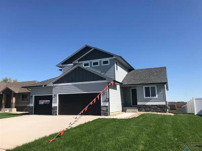 Sioux Falls Single Family Home For Sale: 3900 S Faith Ave