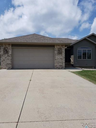 Brandon Single Family Home For Sale: 425 N 9th Ave