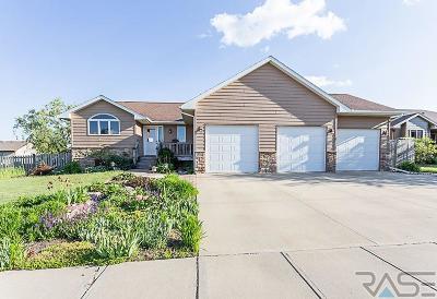 Harrisburg Single Family Home Active-New: 1005 E Maple St