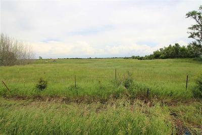 Sioux Falls Residential Lots & Land For Sale: 26482 466th St