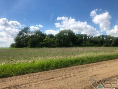 Crooks Residential Lots & Land For Sale: 471st St