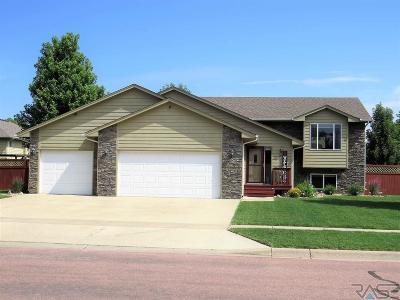 Brandon Single Family Home For Sale: 2412 E Trevino Ln