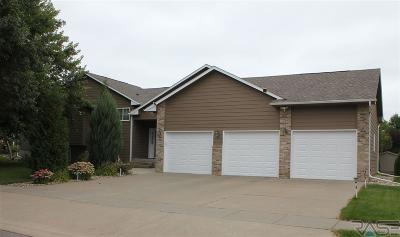 Sioux Falls SD Single Family Home Active-New: $389,900