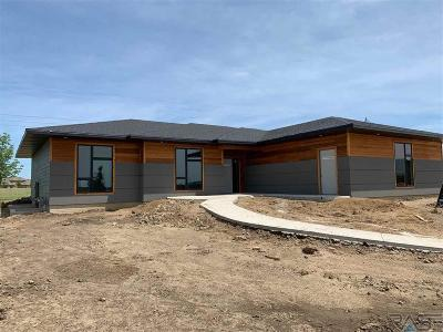 Sioux Falls SD Single Family Home Active-New: $435,000