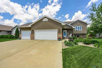 Sioux Falls SD Single Family Home Active-New: $319,900