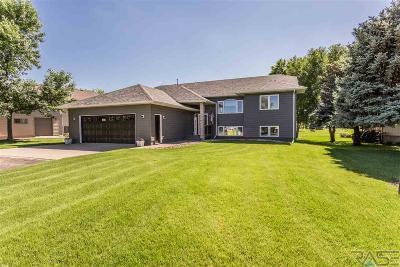 Hartford Single Family Home For Sale: 909 Par Tee Dr
