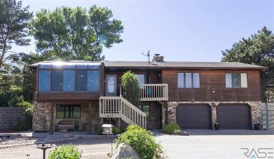 Brandon Single Family Home For Sale: 1704 E Redwood Blvd