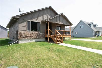 Canton Single Family Home For Sale: 322 N Blair St