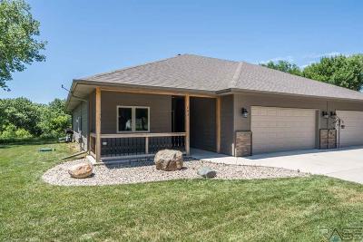 Canton Single Family Home For Sale: 203 N Bridge St