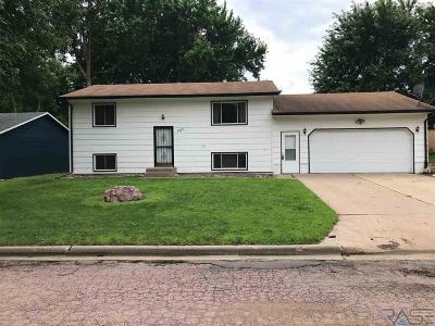 Brandon Single Family Home For Sale: 1505 E Rushmore Dr