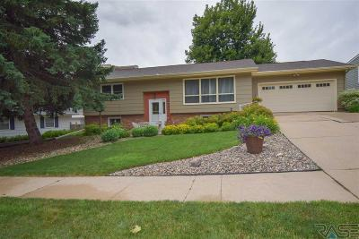 Sioux Falls Single Family Home For Sale: 2813 S Williams Ave