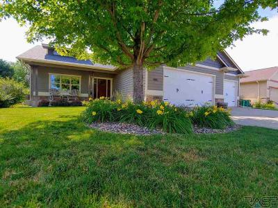 Sioux Falls Single Family Home For Sale: 905 N Dubuque Ave