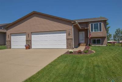 Sioux Falls Single Family Home For Sale: 7828 W Browning St