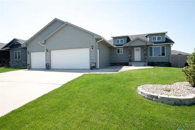 Sioux Falls Single Family Home For Sale: 4213 W 90th St
