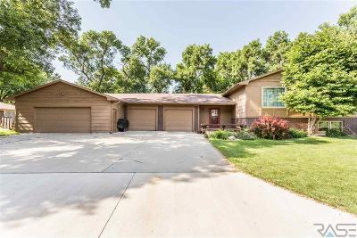 Brandon Single Family Home For Sale: 1504 E Sylvan Cir