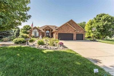 Sioux Falls Single Family Home For Sale: 1605 S Sierra Cir