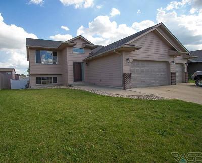 Harrisburg Single Family Home For Sale: 703 Kent St