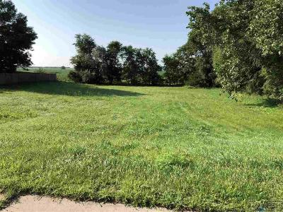 Sioux Falls Residential Lots & Land For Sale: 265th St