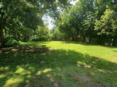 Sioux Falls Residential Lots & Land For Sale: 309 N Spring Ave