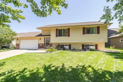Sioux Falls Single Family Home For Sale: 6704 S Hughes Ave