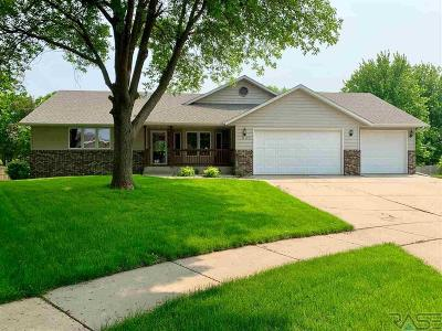 Sioux Falls Single Family Home For Sale: 1000 N Vail Cir