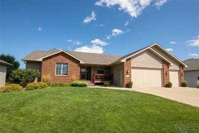 Sioux Falls Single Family Home For Sale: 1208 S Dundee Dr