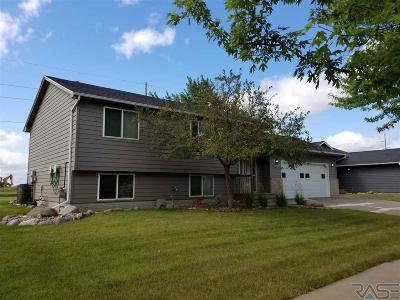 Sioux Falls Single Family Home For Sale: 6137 S Aaron St