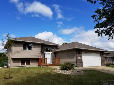 Sioux Falls Single Family Home For Sale: 6115 S Cain St