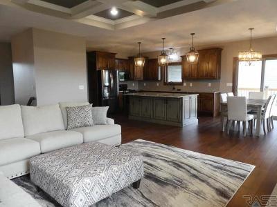 Brandon Single Family Home For Sale: 917 N Freedom Cir