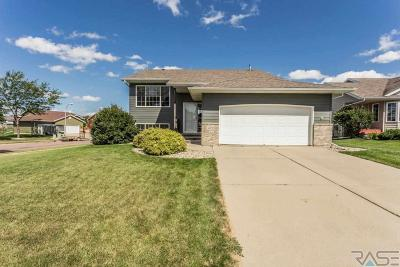 Sioux Falls Single Family Home For Sale: 4700 S Wilson Ave
