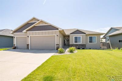 Sioux Falls Single Family Home For Sale: 4405 W Ballard St