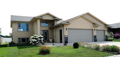 Sioux Falls Single Family Home For Sale: 3128 S World Series Ave