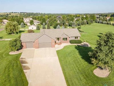 Brandon Single Family Home For Sale: 26609 Caley Cir