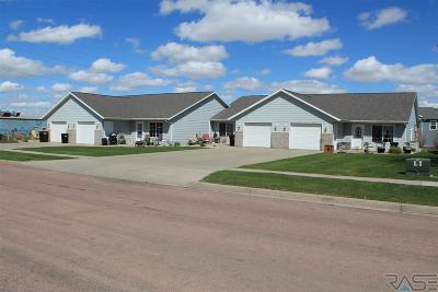 Brandon Multi Family Home For Sale: 608 N 9th Ave
